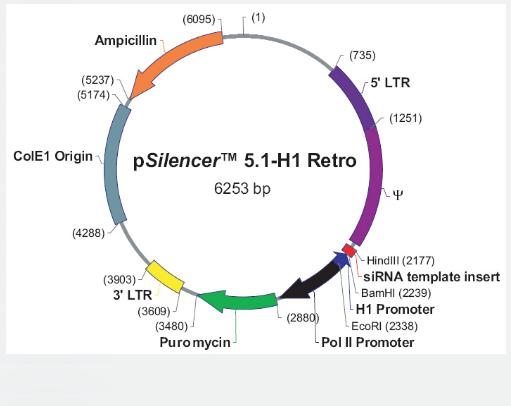 pSilencer5.1-H1-Retro