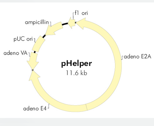 pHelper