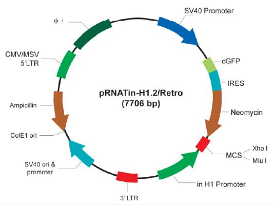 pRNATin-H1.2/Retro